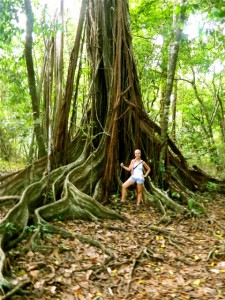 Guided tour through Corcovado National Park